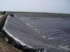 Lodi Vineyard Wastewater Pond